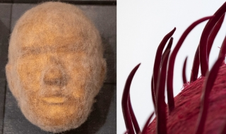 Objekt for forskning - Hur lenge? av Rose-Marie Huuva og Hornrose av Aslaug Juliussen