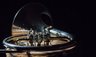 Messingblåser. Foto: Wim van 't Einde